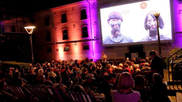Festival International Du Film2