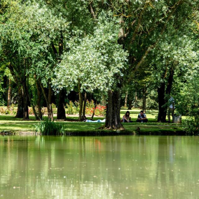 Parc De L'embanie - Heillecourt